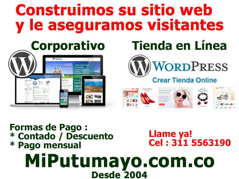 promo sitio web 2016