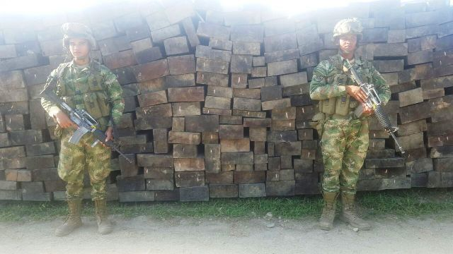 Armada Nacional incauta madera en el Putumayo