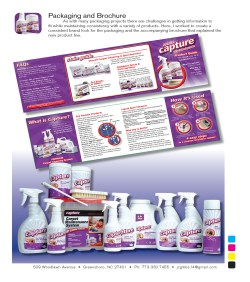 Small Of Capture Carpet Cleaner