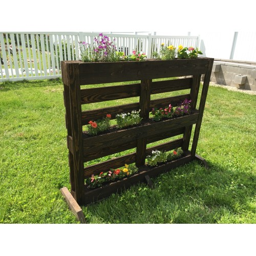 Medium Crop Of Pallet Gardens Images
