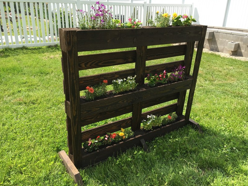 Large Of Pallet Gardens Images