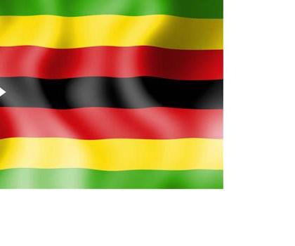 ZIMBABWEAN MEDIA GROUPS BRIEF ACHPR CHAIRPERSON ON MEDIA REFORMS