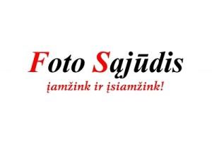 Fotosajudzio logo