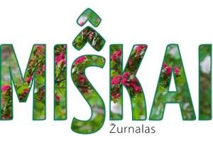 MIsKAI_1