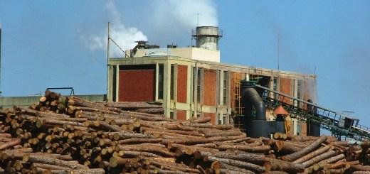 Seminario en el Dachary sobre claves para el fortalecimiento industrial de Misiones