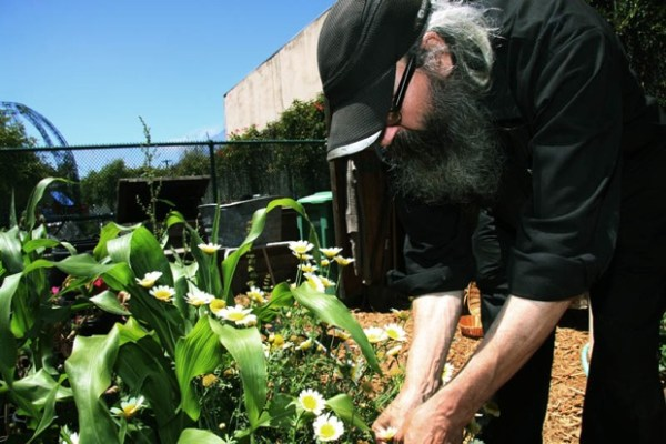 Food and flowers are also harvested from a community garden plot just a few feet away from the line.