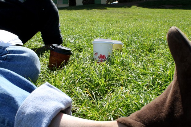 City dwellers relax in Dolores Park with take-away coffee from nearby cafés.
