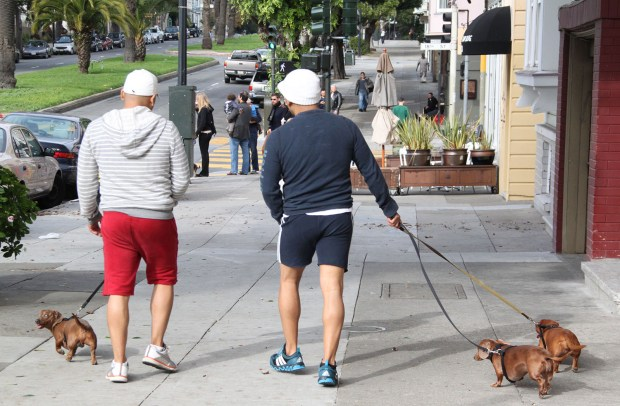 Two men walk Doxens on Dolores Street.