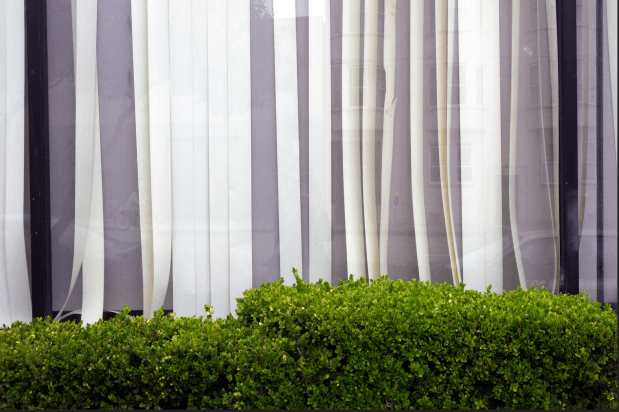 Blinds on Mission Street by Esther Reyes