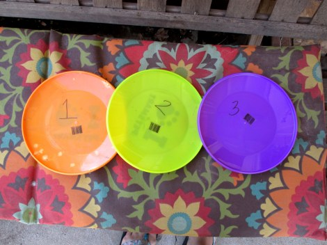 Numbered frisbees