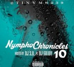Rick Ross Ft. Chris Brown & Others – Nympho Chronicles 10
