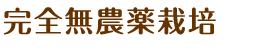 kanzenmunouyaku_h2