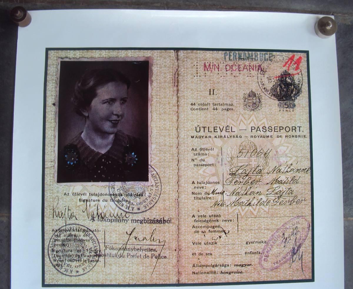 Poster do filme Um Passaporte Húngaro