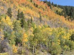 Kebler Pass, Colorado