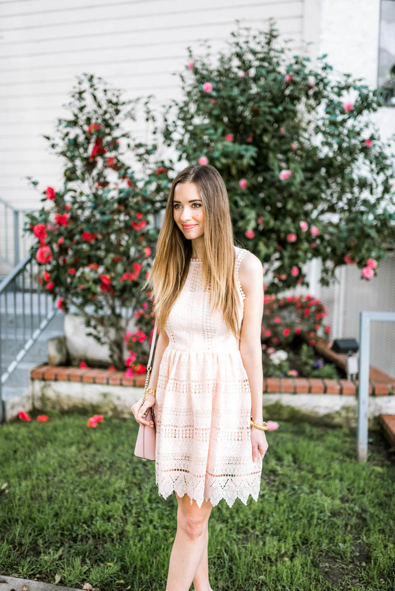 BB Dakota pink lace dress