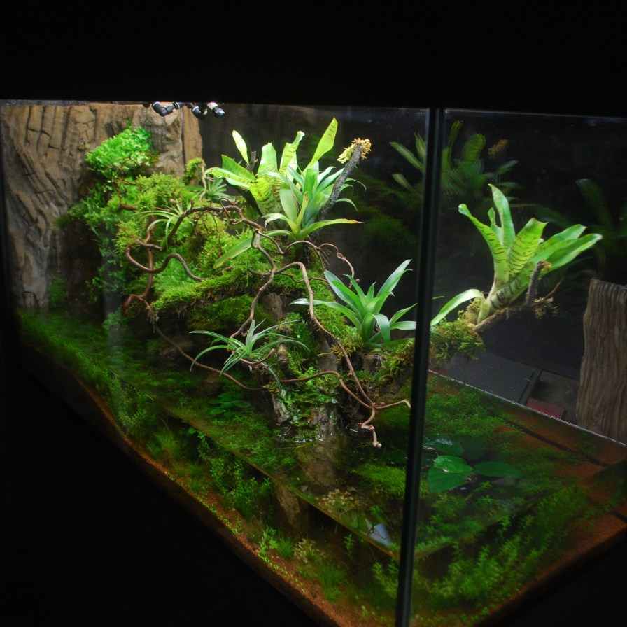 fabricant de d 233 cor terrarium terrarien aquaterrarium d 233 sertique tropicale fausse roche r 233 sine