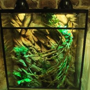 Aquaterrarium100/50/120