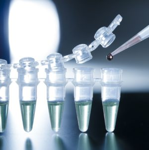 Stem Cell therapy minnesota