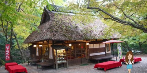 水谷茶屋-20.jpg