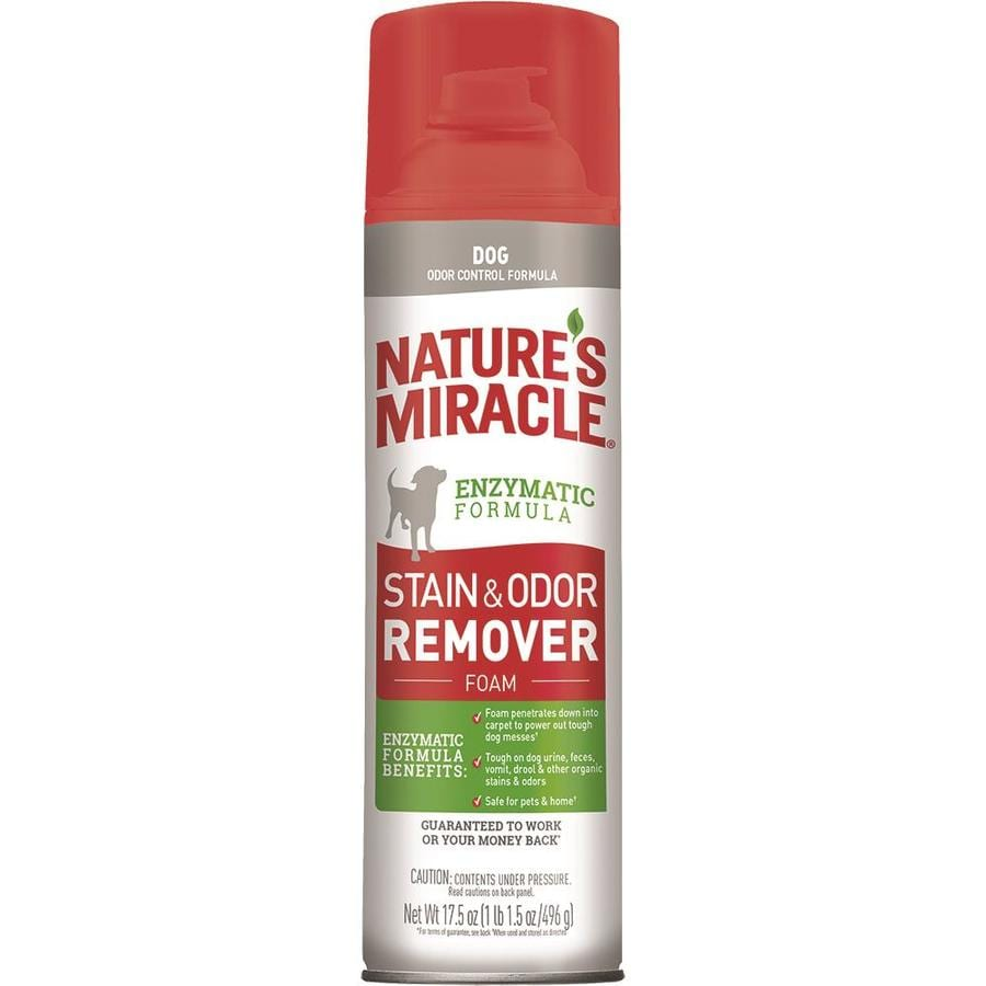Grande Miracle Nm Stain Home Depot Odor Fix Plus Stores Odor Remover Foaming Aerosol Shop Pet Stain Odor Control At Odor Fix houzz-02 Odor Fix Plus