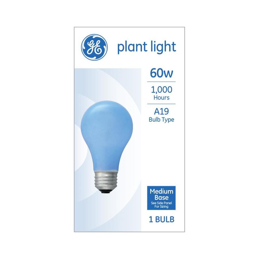 Impeccable Ge Soft Incandescent Grow Light Bulb Shop Ge Soft Incandescent Grow Light Bulb At Grow Light Stand Lowes T12 Grow Lights Lowes houzz 01 Grow Lights Lowes