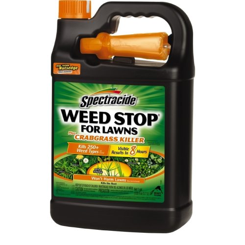 Medium Crop Of Spectracide Weed And Grass Killer