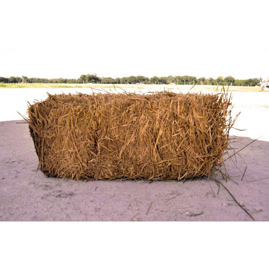 Gorgeous Wheat Straw Shop Wheat Straw At Lowes Johnson City Tn Eclipse Glasses Lowes Aluminum Vinyl Co Johnson City Tn houzz-03 Lowes Johnson City Tn