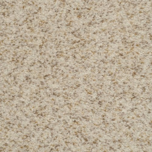 Medium Crop Of Stainmaster Carpet Reviews