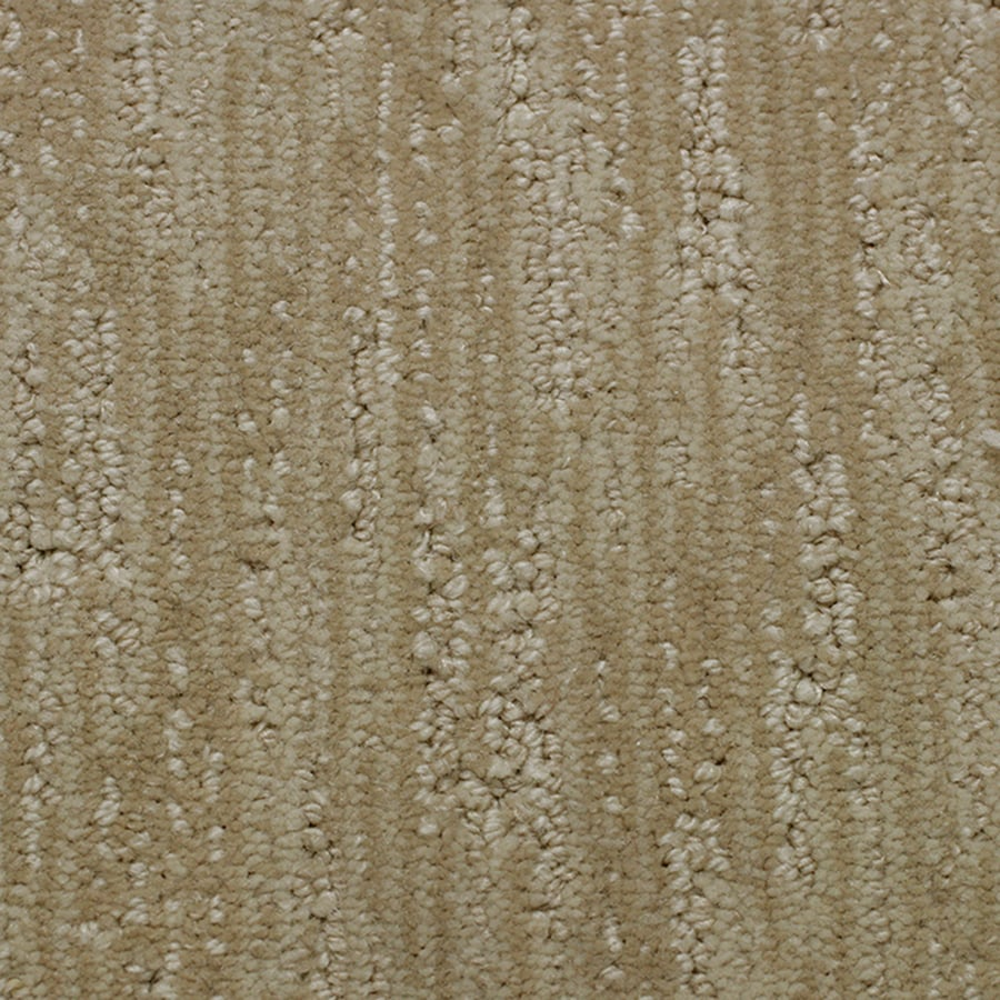 Winsome Stainmaster Essentials Imagination Cashmere Carpet Sample Shop Stainmaster Essentials Imagination Cashmere Carpet Sample At Stainmaster Carpet Cleaner Reviews Stainmaster Berber Carpet Reviews houzz-02 Stainmaster Carpet Reviews