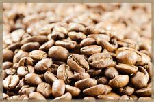 Kaffeecatering Kaffeemarken, Kaffeebar und Espressobar