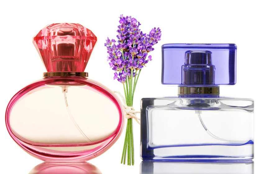 essential-oils-bottles-lavender-Modewest-The-Essential-Business