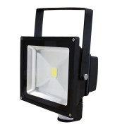 PIR Flood Light