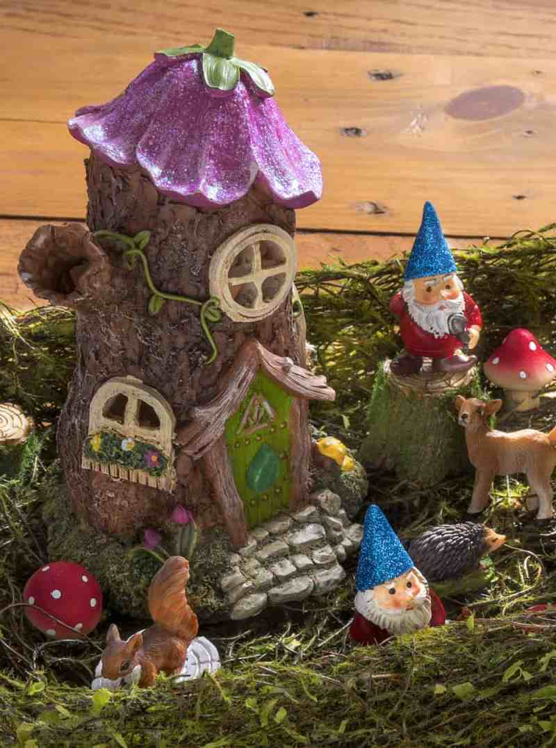 Large Of Fairy Garden Pictures