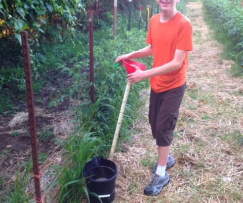Photo: Pictured: Caleb works on a gardening project through Youth Volunteer Corps of Greater Kansas City.