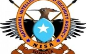 NISA-280x175