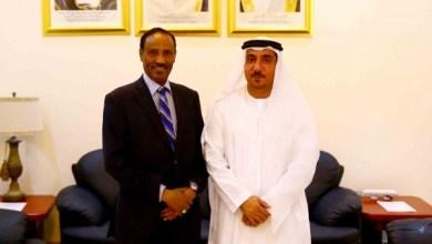 وزير المالية وسفير الإمارات