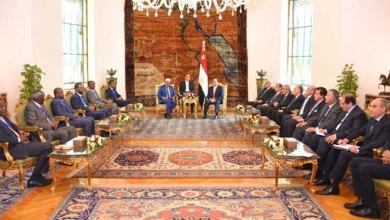 66657-الرئيس-يستقبل-الرئيس-الصومالي-بقصر-الاتحادية-(1)