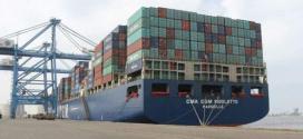 وزير التجارة والصناعة : فتحتنا أسواقا جديدة للصادرات الصومالية