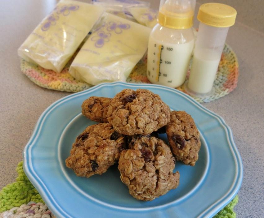 Laktacijski keksi; recept