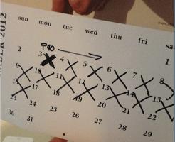 p90x-2weeks