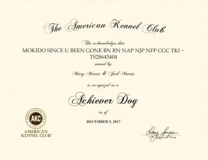 Kelly Achiever Dog Certificate