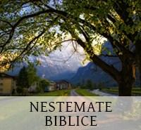 nestemate-biblice