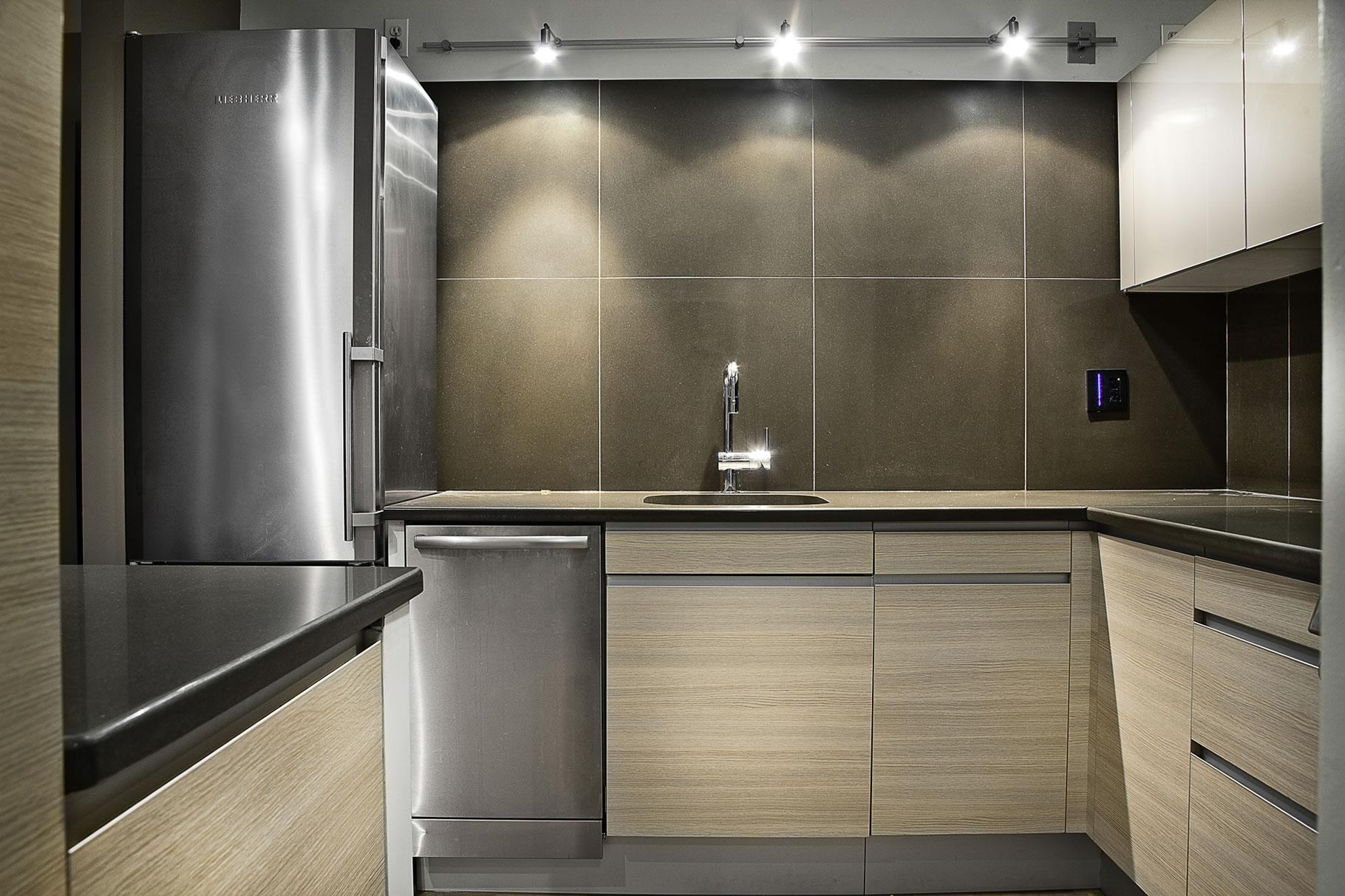 condominiums kitchen remodeling chicago Chicago Kitchen Remodel