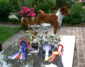 Zizou the Champion