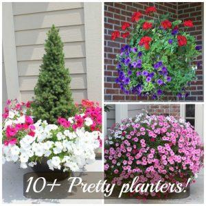 10+ pretty planters