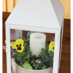 Bring spring inside with a Pansy Lantern