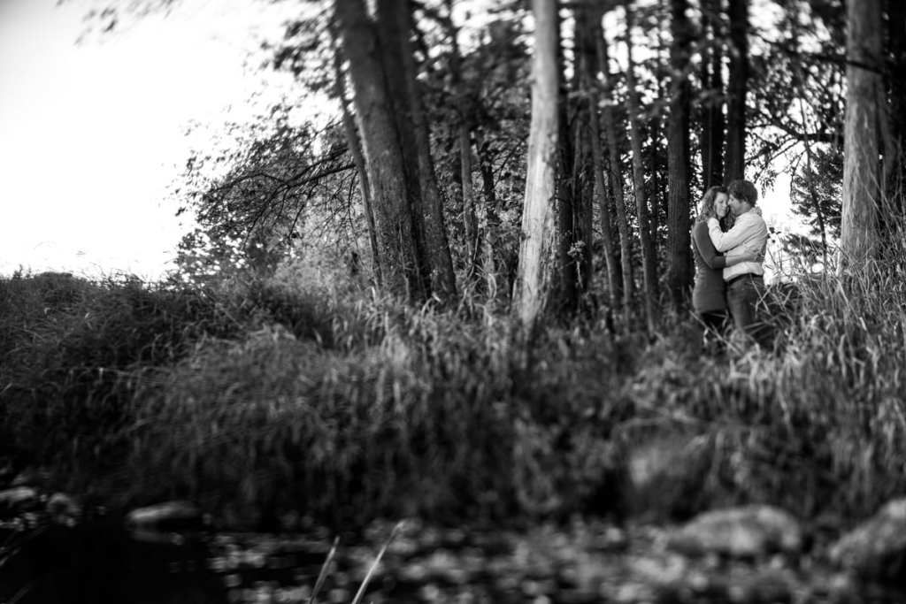 Couple in rural tree stand with tall grass in Martintown engagement session