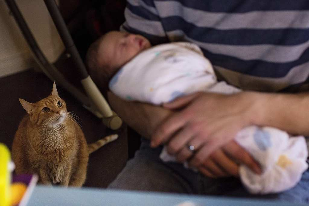 father holding newborn son while cat watches