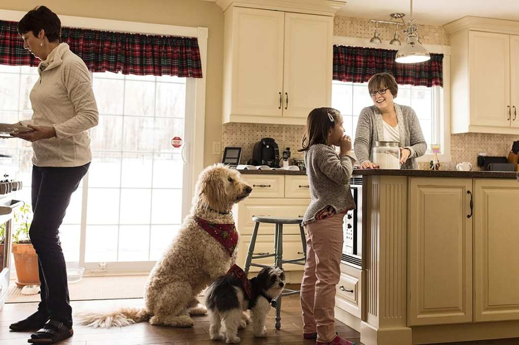 girl eats cookie at kitchen counter while aunts bake and dogs watch