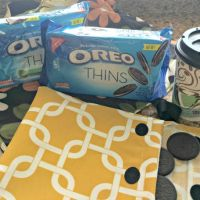 OREO Thins Are In (My New DIY Snack Pack!)